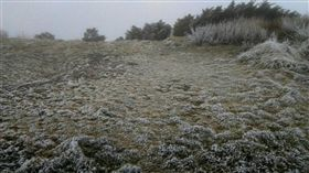 玉山現濃霧、霧淞。圖/氣象局提供