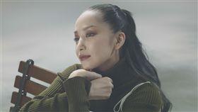 中島美嘉將來台 陪歌迷一同賀新春 圖/台視提供