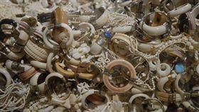 美國魚類及野生動物管理局沒收並準備銷毀的象牙珠寶。(圖/Gavin Shire / 美國魚類及野生動物管理局(USFWS))(名家-環境資訊中心)