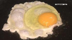 認養雞配蛋1200