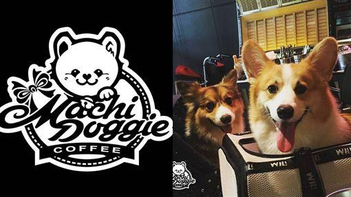 昆凌、Machi Doggie Fashion & Coffee、寵物友善餐廳(圖/翻攝自Machi Doggie Fashion & Coffee、昆凌臉書)