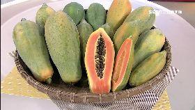 木瓜水果王1800