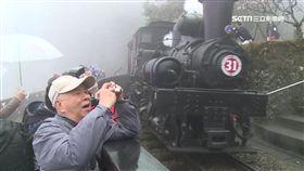 -阿里山森林鐵路-阿里山森鐵-阿里山-