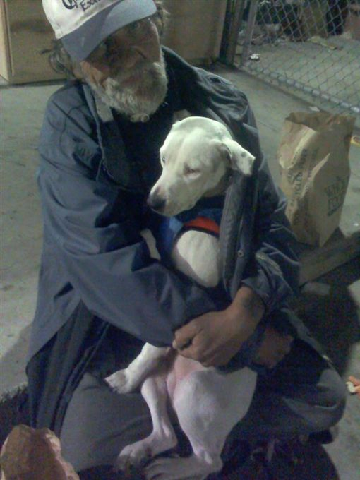 寵物,狗,毛小孩,愛犬,流浪漢,加州,癌症,新家,領養(圖/翻攝自Jenine-Lacette DShazer臉書)