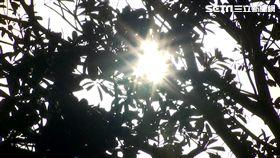 太陽、陽光、回暖、晴天、氣象示意圖
