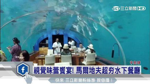 魚兒伴入眠! 非洲海底旅館一晚4.4萬