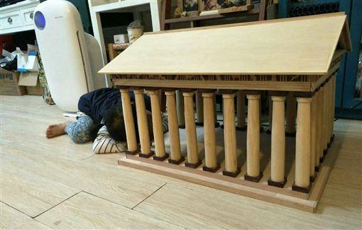 貓奴蓋「帕德嫩貓神殿」 豪華程度連小朋友都想入住。資料來源:PTT