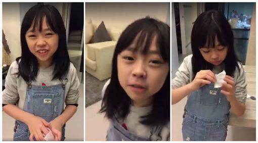 寶妹,圖/臉書宋達民和洪百榕愛的粉園