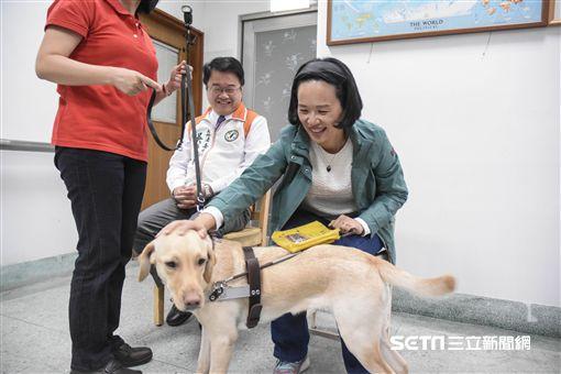 惠光導盲犬訓練學校 立法委員蘇巧慧過年留稿 圖/記者林敬旻攝