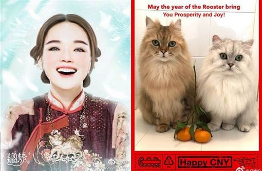 舒淇新年就跟老公馮德倫大方放閃。(圖/舒淇微博)