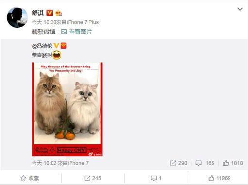 舒淇和馮德倫在微博上互動。(圖/翻攝自馮舒淇微博)