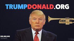 川普,洩恨網站(圖/翻攝自http://trumpdonald.org網站)