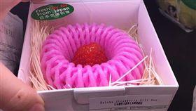 草莓(圖/翻攝自都市報)