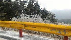 中橫飄雪了(2) 花蓮中橫慈恩路段上午飄雪,雖然短暫,但也讓10日晚 間上山等待雪景的遊客欣喜,目前尚有部分路段積雪, 警方提醒遊客上山要加雪鏈。 (圖/新城分局提供)