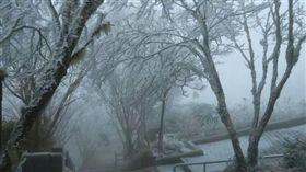 寒流、冰冷、寒冷、太平山、冰霰、霧淞、雪白、銀白(圖/翻攝自太平山國家森林遊樂區臉書)