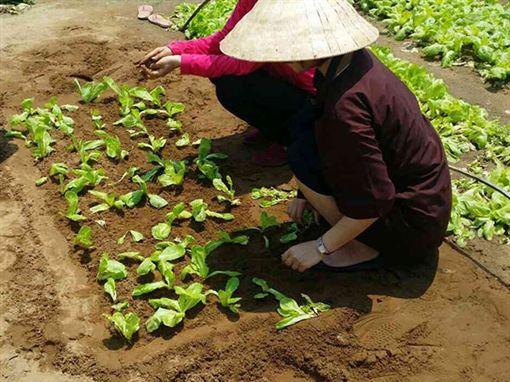 越南中部夢想城市雙樂園一趟旅行加倍精彩公關新聞稿素材