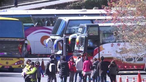 武陵賞櫻日限6千人 團客一日遊限30輛巴士