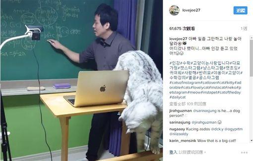 坐搖滾區也只能認真3秒 喵皇:把拔數學是神馬可以吃嗎?圖/翻攝自lovejee27 IGhttps://www.instagram.com/p/BP-Z6AdhjVq/
