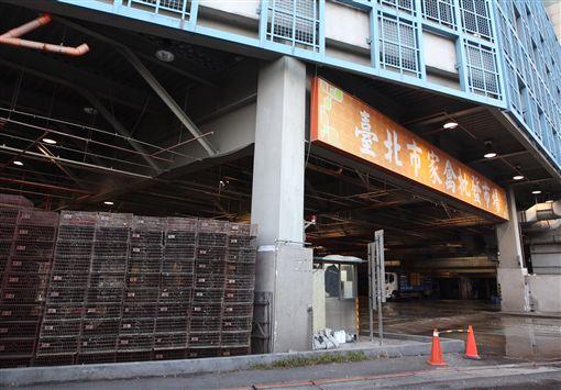 禽流感,H5N6 圖/中央社