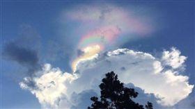 新加坡,星國,火彩虹,天文,奇觀,景象,冰晶雲 圖/翻攝自BBC