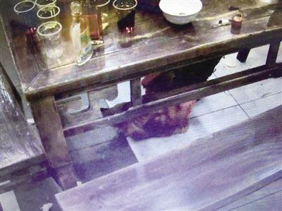 偷天換日?活體現宰別太安心 點1隻雞竟變出10隻雞腳圖/翻攝自重慶晨報http://epaper.cqcb.com/html/2017-02/16/content_226183.htm
