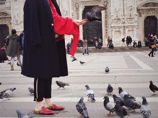 歐陽妮妮,歐陽龍,傅娟,義大利,米蘭大教堂,禽流感,鴿子,餵食 圖/翻攝自歐陽妮妮IG