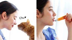 日本フェリシモ猫部 親貓鼻示意圖