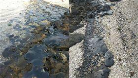 綠島海岸線遭汙染 環保單位忙清除 俞明宏臉書
