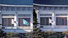 藍色鳳凰旗 圖/翻攝自中央日報
