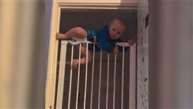 蜘蛛人接班現身 超強寶寶爬牆無極限