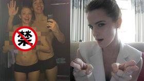 艾瑪華森(Emma Watson)、亞曼達塞佛瑞(Amanda Seyfried)/臉書、inquisitr