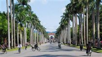 台大、台灣大學、校園(圖/翻攝自國立臺灣大學臉書)