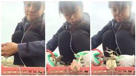 女子剪紅蔥頭,順便剪了耳機 圖翻攝自爆料公社 https://www.facebook.com/162608724089621/videos/446995302317627/