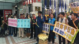 國民黨中常會,白海芋(圖/記者陳彥宇攝)