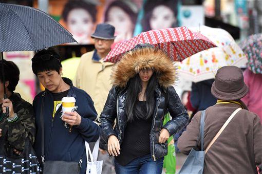下雨,降雨,天氣,氣象,寒流,冬天,濕冷圖/中央社