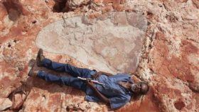 澳洲侏儸紀公園 考古 腳印 http://www.abc.net.au/news/2017-03-27/world-biggest-dinosaur-footprint-found-north-western-wa/8391098