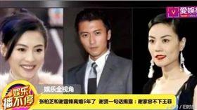 張柏芝,謝霆鋒,離婚,兒子,負面新聞,王菲,謝賢,再婚 圖/翻攝自中華網