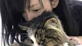 周慧敏向愛貓道別 慟喊「永遠愛你」 圖/翻攝自周慧敏臉書