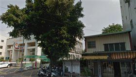 台中,榕樹 圖/翻攝自google map