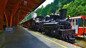阿里山森林鐵路-蒸氣火車(圖/林務局提供)