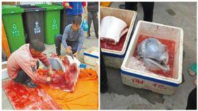 廣東珠海有人殺害中華白海豚。(合成圖/翻攝自新浪微博@珠海同城會)