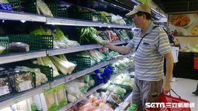 颱風,菜價,菜蟲,漲價,中盤商,物價,淹水,農作物   圖/記者林敬旻攝