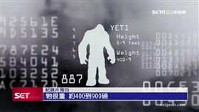 高3公尺.重300公斤? 珠峰雪怪疑現身