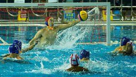 世大運水球測試賽,中華隊(藍帽)出戰印尼。(圖/世大運提供)