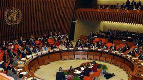 World Health Assembly、WHA、世界衛生組織/(資料照/美聯社/達志影像)