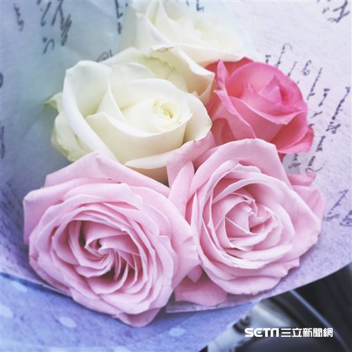 玫瑰花、花朵、花兒、花束、告白、表白