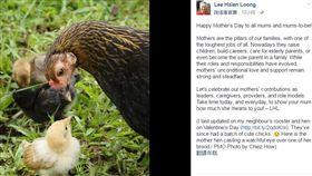 新加坡總理李顯龍臉書
