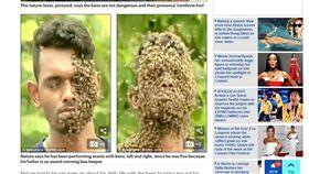 印度男子與蜜蜂為伍(圖/翻攝自每日郵報)