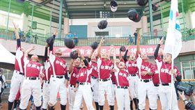 台東縣奪下本屆華南金控盃少棒賽冠軍。(圖/棒協提供)