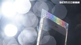 同婚釋憲,同性戀,反同,同志,平權 圖/記者林敬旻攝